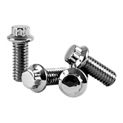 SCREW KIT HARLEY DAVIDSON COLLECTOR 12 points 95-13. EVOLUTIO