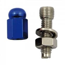 tornillo-de-matricula-alloy-hex-domed-blue