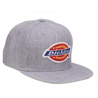 DICKIES MULDOON GRAY CAP